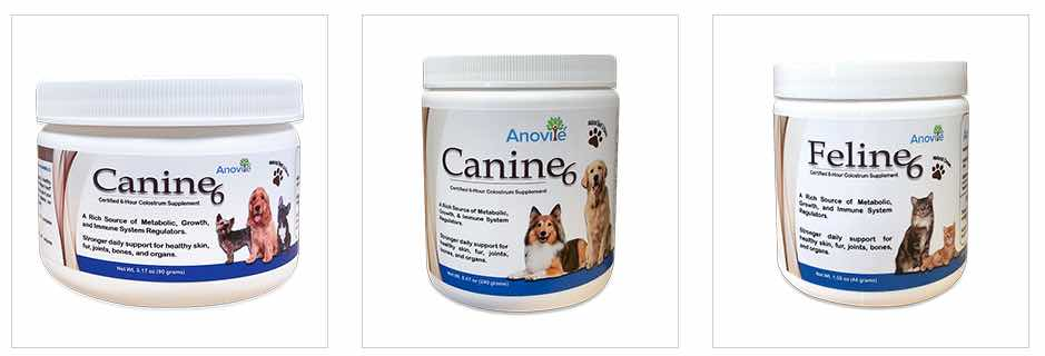 Pet Health Anovite products
